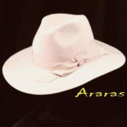 Sombrero Fedora femenino ala ancha TK13 en Araras