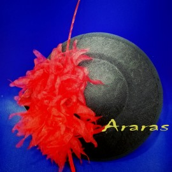 Tocado disco 25 en Araras
