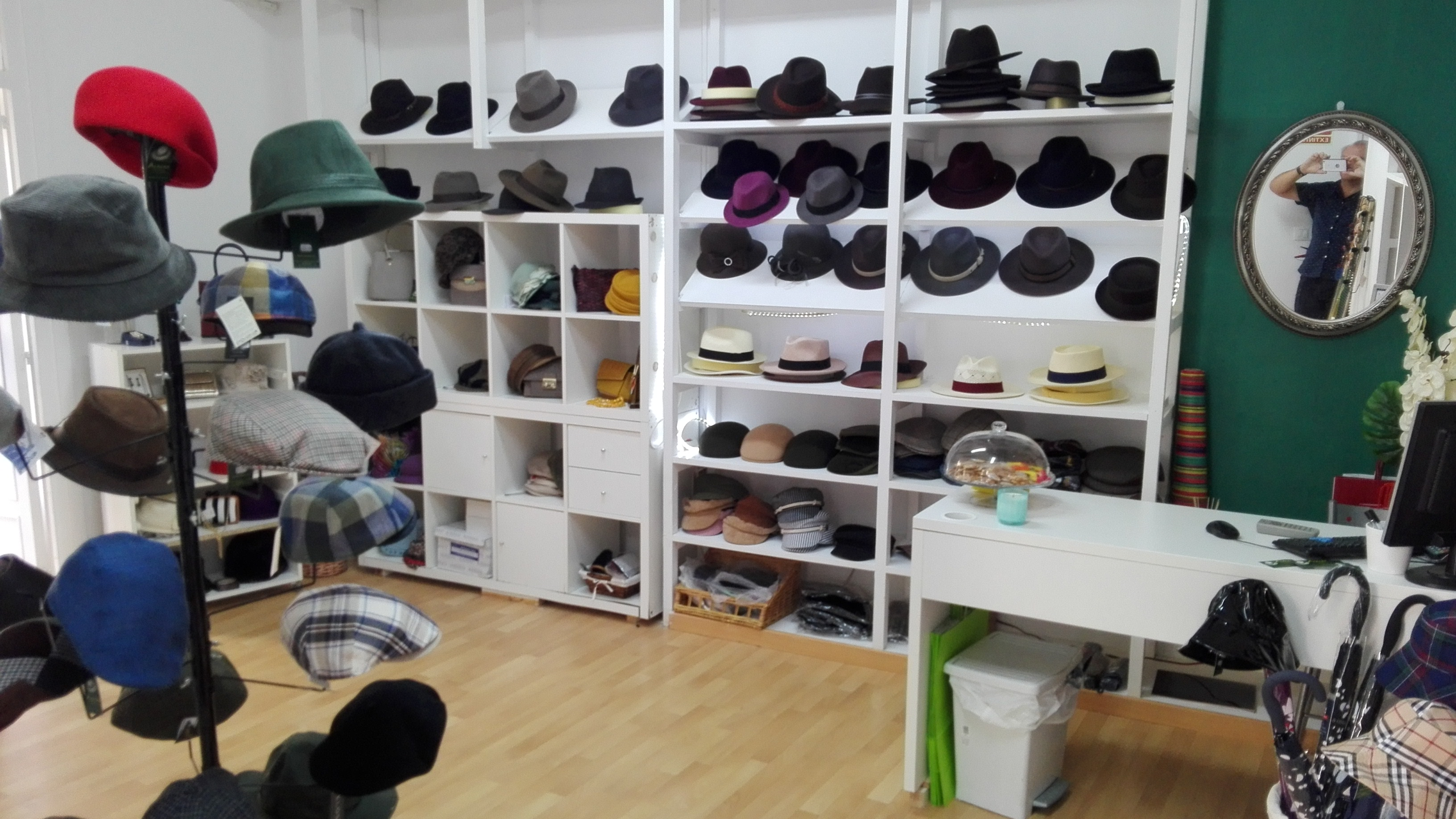 Interior tienda Araras Zaragoza